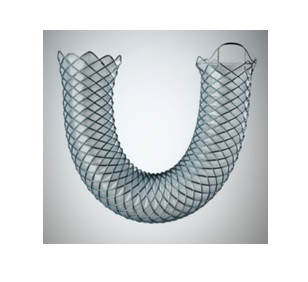 WALLFLEX BILIARY RX STENT